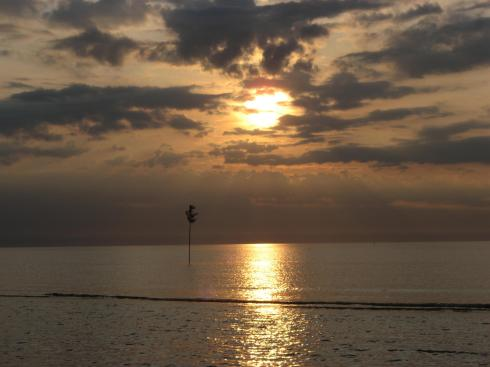 Kociņš jūrā